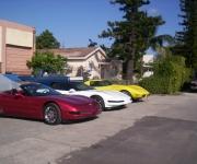 line-up-of-corvettes